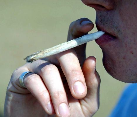 cannabis, legalisation, illicit drugs, decriminalisation, Estonia, EKRE