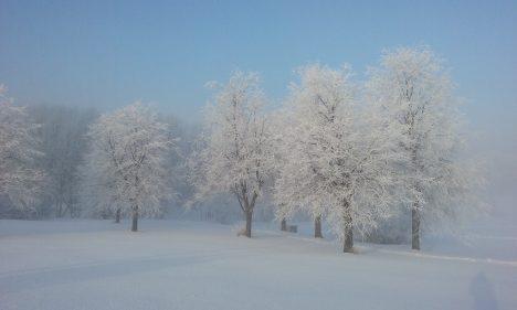 forecast, weather, Latvia, meteorologists