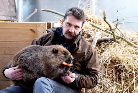 Ingmārs Līdaka, Riga Zoological Garden, Andris Morozovs, dismissal, recommended